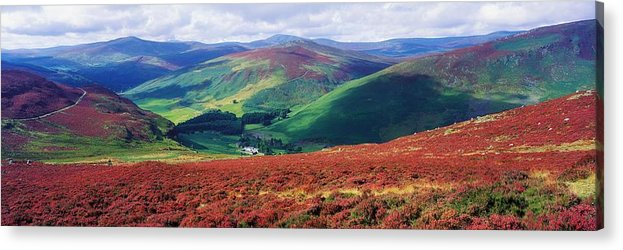 Beauty Acrylic Print featuring the photograph Wicklow Way, Co Wicklow, Ireland Long by The Irish Image Collection