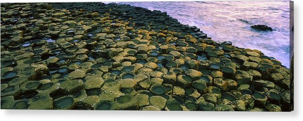 Beach Acrylic Print featuring the photograph Giants Causeway, Co Antrim, Ireland by The Irish Image Collection