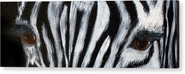Zebra Eyes Acrylic Print featuring the painting Whos Watching Who  Zebra by Darlene Green