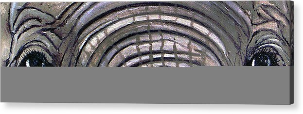 Elephant Eyes Acrylic Print featuring the painting Whos Watching Who by Darlene Green