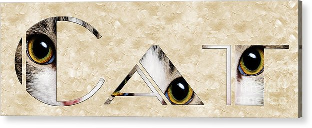 Cat Acrylic Print featuring the mixed media The Word Is Cat by Andee Design