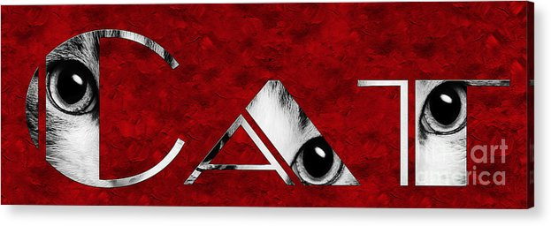 Andee Design Cat Acrylic Print featuring the photograph The Word Is Cat Bw On Red by Andee Design