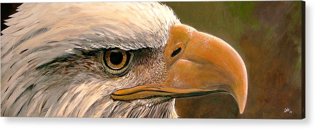 Bald Acrylic Print featuring the painting Bald Eagle by Arie Van der Wijst