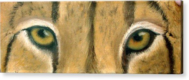 Cheeta Acrylic Print featuring the painting Whos Watching Who Cheeta by Darlene Green