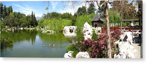 Digital Acrylic Print featuring the photograph Chinese Gardens by Bedros Awak