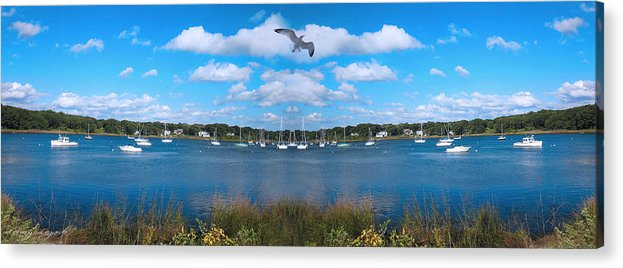 Marina Park Acrylic Print featuring the photograph Marina by Lourry Legarde