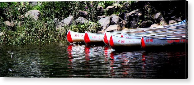 Acrylic Print featuring the photograph Canoe Rentals On The St Croix by Tam Graff