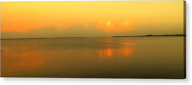 Florida Acrylic Print featuring the photograph Evening Shades by Ian MacDonald