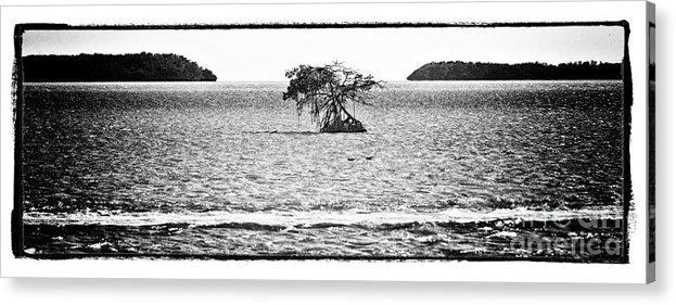 Ocean Acrylic Print featuring the photograph Florida Bay by Bruce Bain