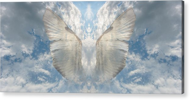 Sky Acrylic Print featuring the photograph Wings 1 by Bob Bennett