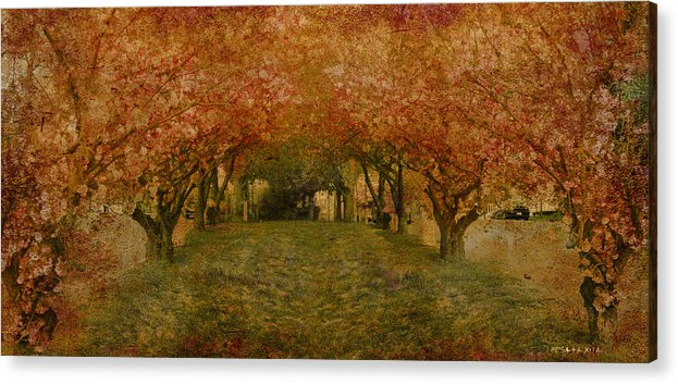 Garden Tree Trees Flowers Acrylic Print featuring the photograph In My Garden by Inesa Kayuta