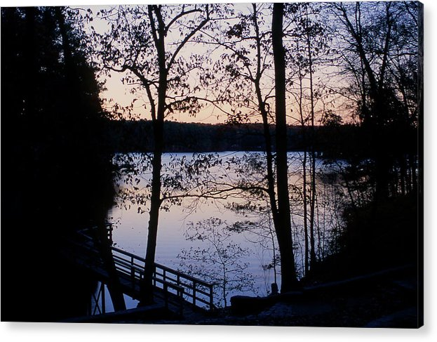 Sunset Acrylic Print featuring the photograph Through the Trees by Ayesha Lakes