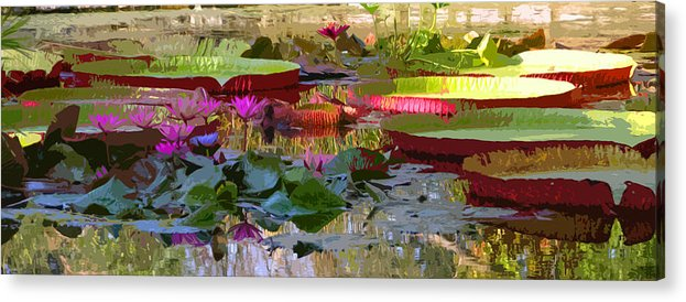 Water Lilies Acrylic Print featuring the photograph Passion for Beauty by John Lautermilch