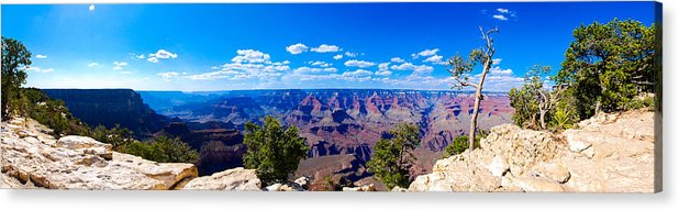 Grand Canyon Acrylic Print featuring the photograph Grand Canyon Panorama White by David Waldo