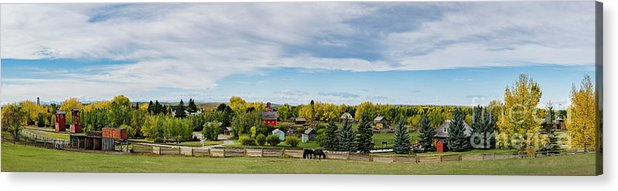 Allenfoto Acrylic Print featuring the photograph The View by Brad Allen Fine Art