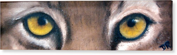 Bobcat Eyes Acrylic Print featuring the painting Whos Watching Who Bobcat by Darlene Green