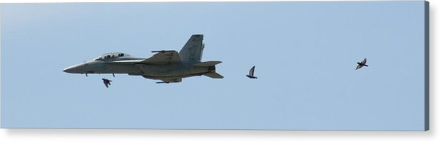 Airplane Acrylic Print featuring the photograph Try To Keep Up Would Ya by David Dunham