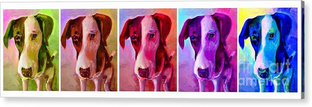 Dog Acrylic Print featuring the painting Colored Dog Strip by Linda Vespasian