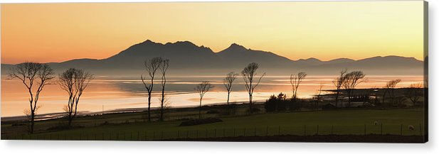 Horizontal Acrylic Print featuring the photograph Bare Trees At Coast by Image by Peter Ribbeck