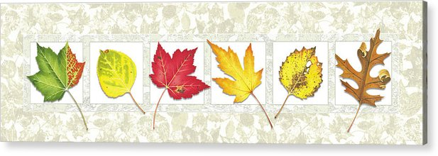 Jon Q Wright Acrylic Print featuring the painting Fall Leaf Panel by JQ Licensing