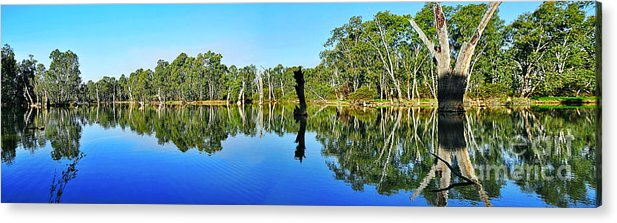 Photography Acrylic Print featuring the photograph River Panorama And Reflections by Kaye Menner