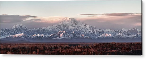 Talkeetna Acrylic Print featuring the photograph Pensive by Ed Boudreau