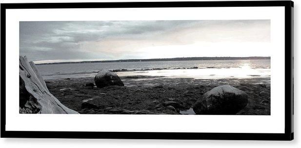 Acrylic Print featuring the photograph Simple Beach Wood by Kara Ray