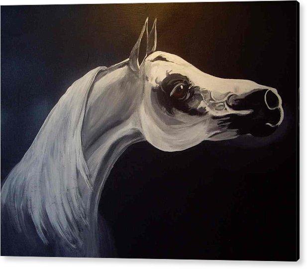 Horse Acrylic Print featuring the painting Proud Arabian Stallion by Glenda Smith
