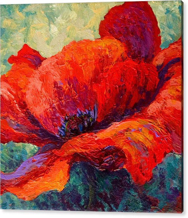 Red Poppy III by Marion Rose