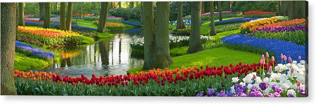 Scenics Acrylic Print featuring the photograph Spring Flowers In A Park by Jacobh