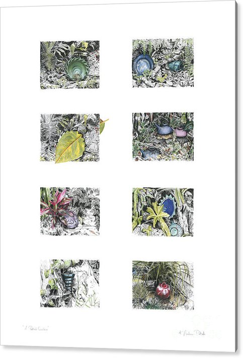 Tropical Acrylic Print featuring the drawing A Potters Garden by Kerryn Madsen-Pietsch