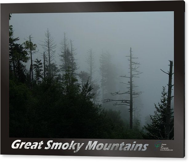 Great Acrylic Print featuring the photograph Great Smoky Mountains National Park 17 by Charles Fox