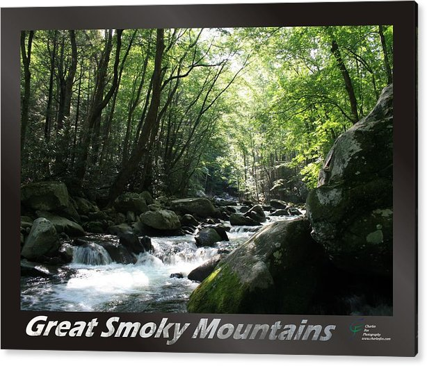 Great Acrylic Print featuring the photograph Great Smoky Mountains National Park 10 by Charles Fox