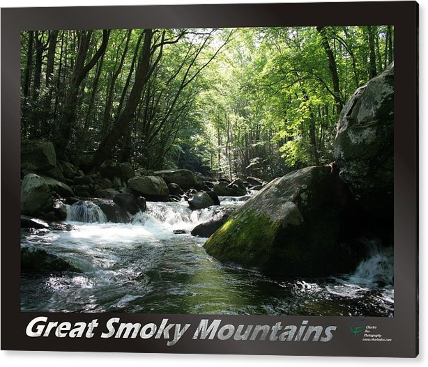 Great Acrylic Print featuring the photograph Great Smoky Mountains National Park 12 by Charles Fox