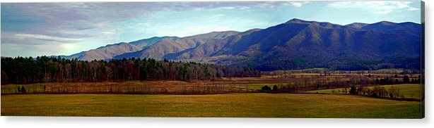 Cades Cove Acrylic Print featuring the photograph Our Backyard by David A Brown