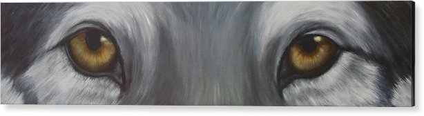 Wolf Acrylic Print featuring the painting Grey Wolf by Darlene Green