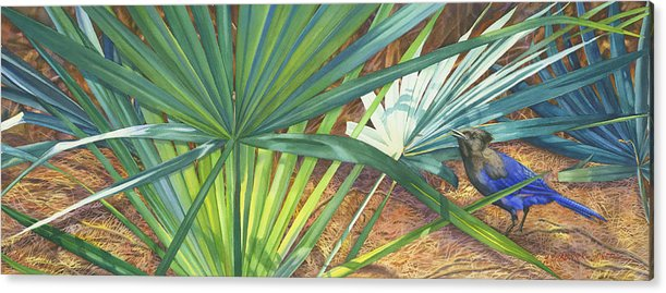 Stellar\'s Bluejay Acrylic Print featuring the painting Palmettos And Stellars Blue by Marguerite Chadwick-Juner