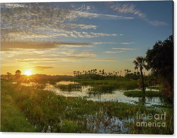 Classic Florida Sunrise by Brian Kamprath