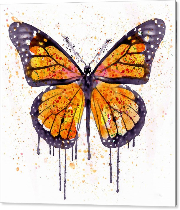Monarch Butterfly watercolor by Marian Voicu
