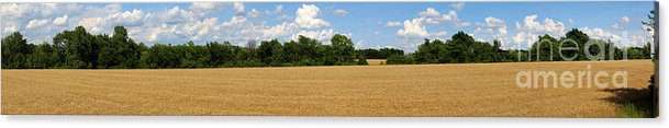 Wheat Acrylic Print featuring the photograph Kansas Wheat Field 3a by Gary Gingrich Galleries