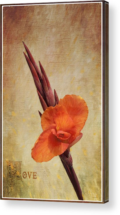Garden Acrylic Print featuring the painting A Loving Gladiolus by AGeekonaBike Fine