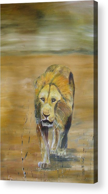 Lion Acrylic Print featuring the painting The Long Walk by Andy Davis