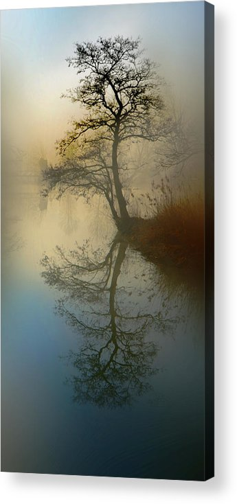 Silence Acrylic Print featuring the pyrography Early Morning by manhART