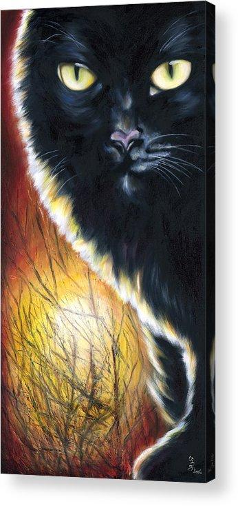 Cat Acrylic Print featuring the painting Sunset by Hiroko Sakai