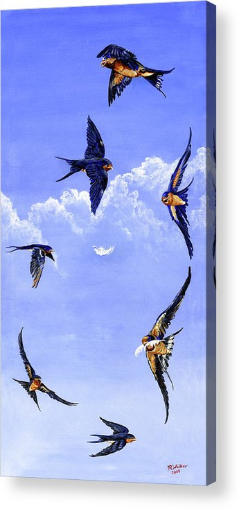 Barn Swallows Acrylic Print featuring the painting Feathers by Robert M Walker