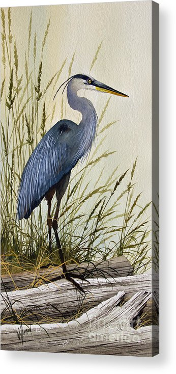Great Blue Heron Acrylic Print featuring the painting Great Blue Heron Splendor by James Williamson
