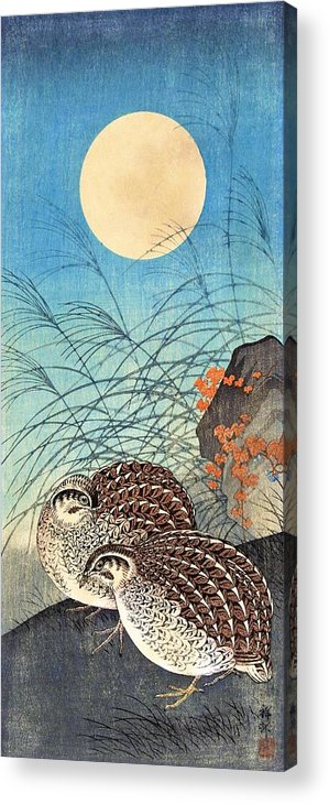 Ohara Acrylic Print featuring the painting Top Quality Art - Moon And Quail by Ohara Koson