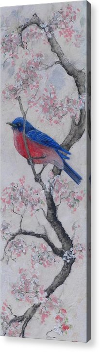 Bluebird Acrylic Print featuring the painting Bluebird In Cherry Blossoms by Sandy Clift