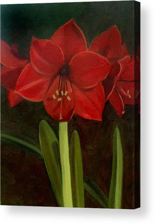 Amaryllis Acrylic Print featuring the painting Amaryllis by Nancy Griswold