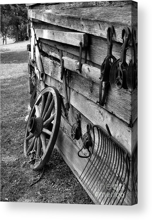 Acrylic Print featuring the photograph Cabin Wall by Julie Dant